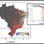 Long-range spatial correlations and fluctuation statistics of lightning activity rates in Brazil