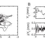 Non-Gaussian center-of-pressure velocity distribution during quiet stance