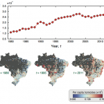 Spatial correlations, clustering and percolation-like transitions in homicide crimes