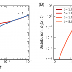 Nonlinear Diffusion Equation with  Reaction Terms: Analytical and Numerical Results